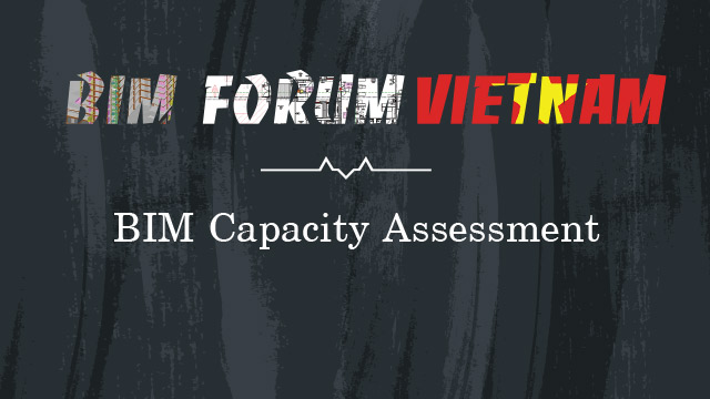 BIM capacity assessment